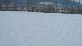 Beaauty del Kashmir Fotografia Stock