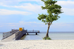Beach of Öland. Blue sky with clouds Stock Image