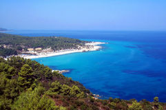 Beach. And pine trees in Northern Greece Stock Image