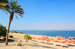 Beach. Umbrellas On Sandy Beach Of Dead Sea, Israel Royalty Free Stock Image