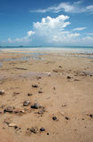 Beach. With rocks at Koh Samui, Thailand Stock Image