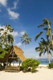 Beach. Coconut trees along beach Royalty Free Stock Photography