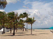 At the Beach. Afternoon at Ft.Lauderdale Beach, Fl Stock Image