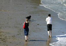 On the beach. A young couple walking their dog on the beach stock image