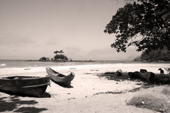 Beach. Nice beach in ilhabela brazil ,(castelhanos royalty free stock photos