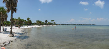 The beach. This is a panoramic of the beach and palms Royalty Free Stock Photography