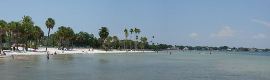 The beach. This is a panoramic of the beach and palms Royalty Free Stock Images
