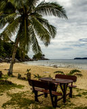 The beach. With palm tree, bench and table Stock Photography