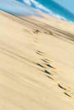 Beach. Human foot steps printed into the sand near to sea beach with sea waves in the background Royalty Free Stock Photography