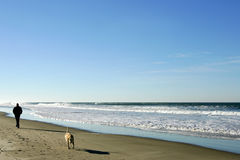 Beach. Man and dog walking on sandy beach, Oregon Royalty Free Stock Image