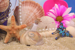 Beach. Starfish With Sea Shells and Flower on Beach Stock Photography
