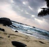 Beach. White sand beach on Big Island, Hawaii Royalty Free Stock Image