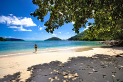 The Beach. A beautiful beach on seychelles Royalty Free Stock Photography