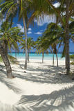 Beach. Beautiful scene on the beach in Guanabo - Cuba stock image