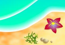 Beach. Starfish on a tropical beach royalty free illustration