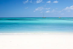 The beach. Palm beach at the Aruba island Stock Image