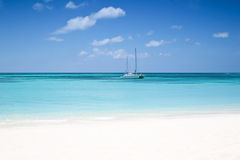 The beach. Palm beach at the Aruba island stock photography