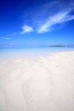 Beach. Exotic beach under a blue sky Royalty Free Stock Photos