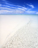 Beach. Exotic beach under a blue sky Stock Photography
