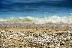 On the beach. (sea, ocean Stock Photography