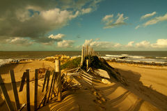 Beach 6 Royalty Free Stock Photo