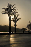 Beach. Sunset on a beach in Turkey city Alaniya Stock Image