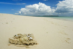 Beach. Sand beach on northern coast of Zanzibar island Stock Photography