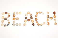 Beach. Word BEACH made by sea shells Royalty Free Stock Photo