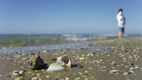 Beach3 Photographie stock libre de droits