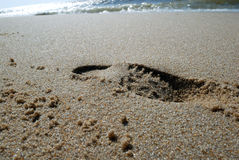 On the beach. Footprint on beach Royalty Free Stock Photography