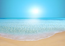 Beach. Exotic beach under a blue sky Stock Images