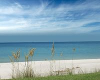 The beach. Grassy beach view with a bright sky Royalty Free Stock Photos