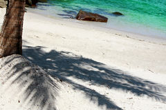 Beach. With a shadow of coconut tree Stock Photos