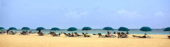 Beach. A panoramic shot of a beach with umbrellas Royalty Free Stock Images