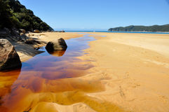 Beach at Abel Tasman national park Stock Images