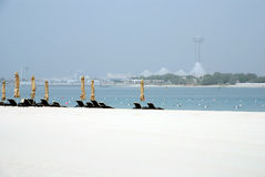 Beach Abu Dhabi stock image