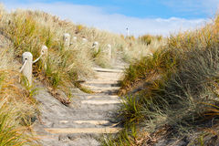 Beach Access Path Stock Image