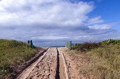 Beach Access Road and Tire Tracks on Sand Dune royalty free stock photo