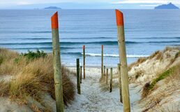 Beach access Ruakaka. NZ Royalty Free Stock Photography