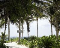 Sign on palm tree pointing to ocean. Beach access sign on palm tree sandy beach Stock Photography