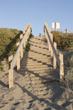 Beach access stairs. A stairway leading up the dunes on a New Zealand beach Royalty Free Stock Photography