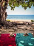 Beach accessoires by the sea. Red and turquoise towl under a tree by the bech Royalty Free Stock Photography