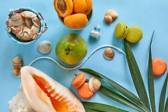 Beach accessories, fresh tasty fruits and macaron on a blue background royalty free stock images