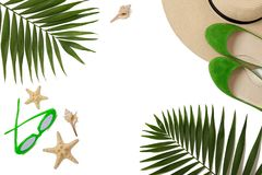 Beach accessories green color with tropical palm leaves on isola. Ted background with empty space for text. Flat lay, top view Stock Images