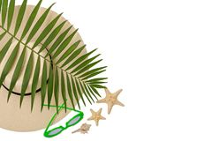 Beach accessories green color with tropical palm leaves on isola. Ted background with empty space for text. Flat lay, top view Royalty Free Stock Photos