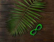 Beach accessories green color with tropical palm leaves on woode. N background with empty space for text. Flat lay, top view Royalty Free Stock Photo
