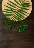 Beach accessories green color with tropical palm leaves on woode. N background with empty space for text. Flat lay, top view Royalty Free Stock Photography