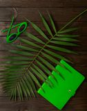 Beach accessories green color with tropical palm leaves on woode. N background with empty space for text. Flat lay, top view Stock Image