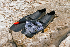 Beach accessories. Mask, fins, snorkel Stock Photography
