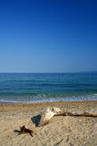 Beach on Aegean sea. Greece royalty free stock photo